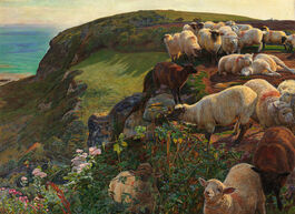 Hunt: Our English Coasts