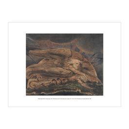 William Blake Elohim Creating Adam exhibition print