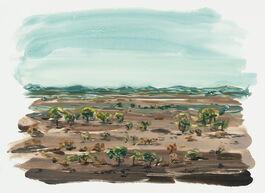 Lisa Milroy: African Landscape