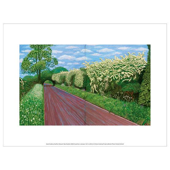David Hockney Hawthorn Blossom  (exhibition print)