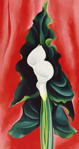 Georgia O'Keeffe: Calla Lilies on Red