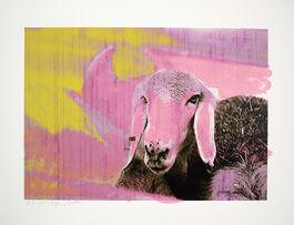 Menashe Kadishman: Sheep Head B