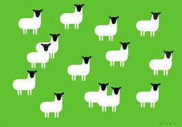 Monro: Sheep