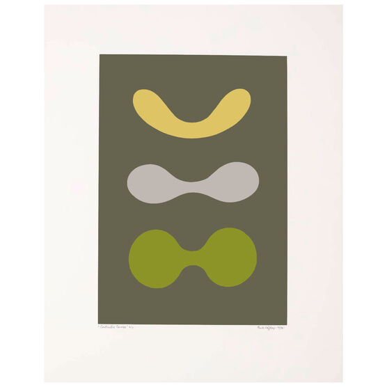 Contrasted Curves (Yellow/Grey/Green) limited edition