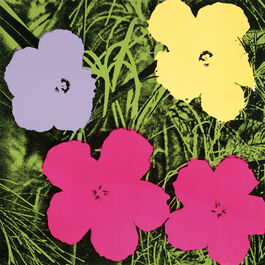 Andy Warhol: Flowers (1 purple, 1 yellow, 2 pink)