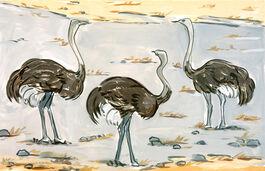 Lisa Milroy: Ostriches