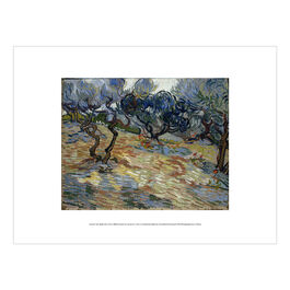 Vincent van Gogh: Olive Trees exhibition print