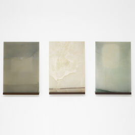 Luc Tuymans, Slides, 2019