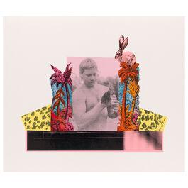 Monster Chetwynd, Steve Irwin, 2020