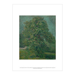 Vincent van Gogh: Horse Chestnut Tree in Blossom exhibition print