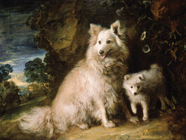 Thomas Gainsborough: Pomeranian Bitch and Puppy