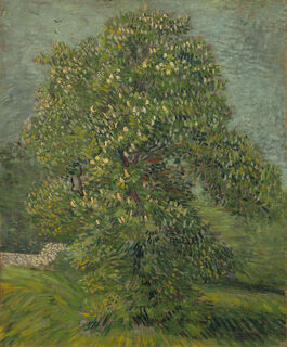Vincent van Gogh: Horse Chestnut Tree in Blossom