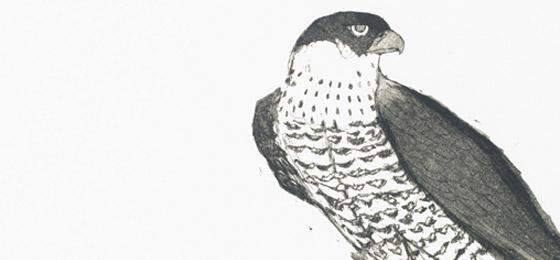 Elisabeth Frink custom prints